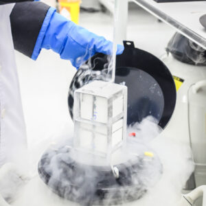 Scientist freezing embryos for frozen embryo transfer, a type of IVF | RSC of the San Francisco Bay Area